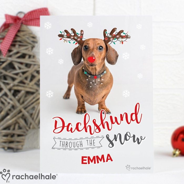 Rachael Hale Christmas Dachshund Through the Snow Card