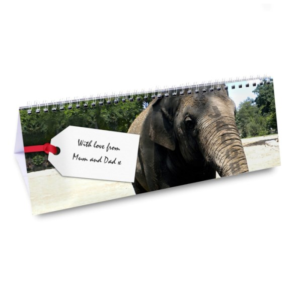 Zoo Desk Calendar