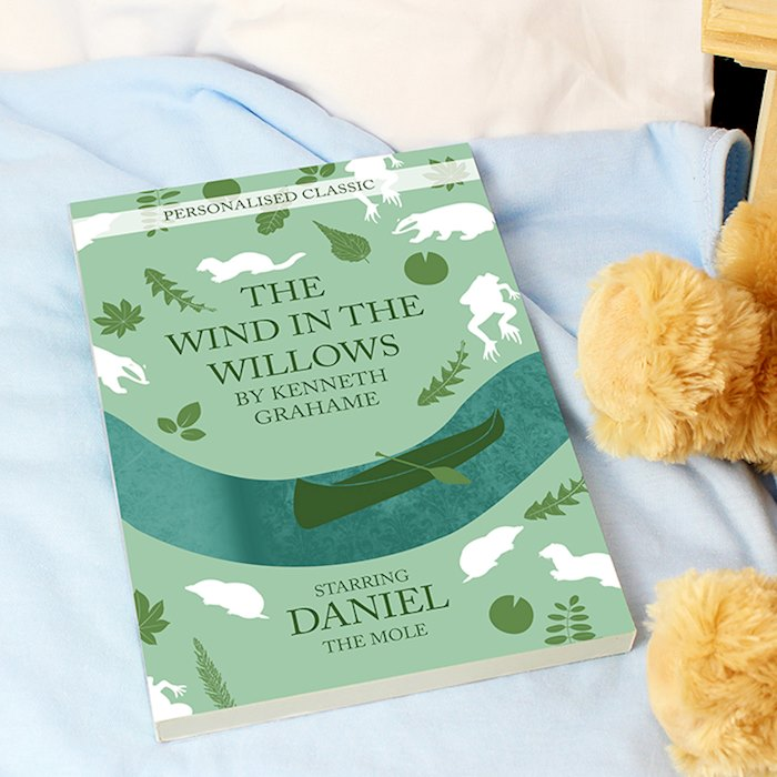 The Wind in the Willows Novel - 6 Characters